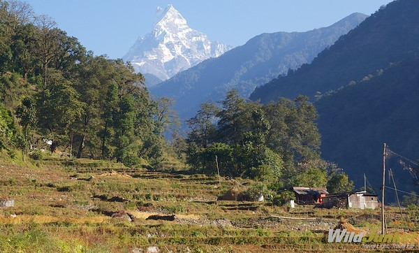Machhapuchre Mountain